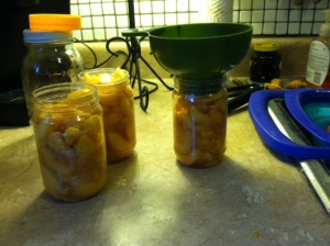 filling peach jars