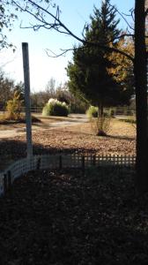 driveway farm